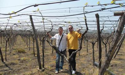 Nicola and Andrea in a Tendone Vineyard at San Nicola