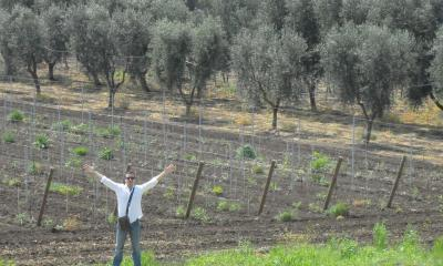 Nicola Biscardo and a new vineyard of Primitivo at San Nicola estate